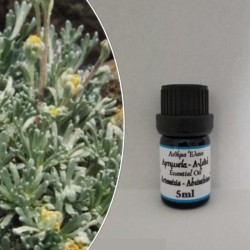 Artemisia-Avistia essential...