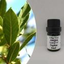 Essential oil daphne - 5ml - Pagaioils